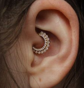 daith piercing picture